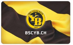 Freigabe BernCity Young Boys 04.2017[1]